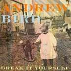 Andrew Bird: Break It Yourself, CD