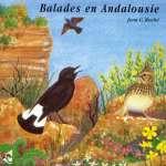 Andalusian Walks