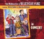 Abi Wallenstein: In Concert 2009