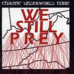 Chaotic Underworld Noise4