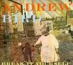 Andrew Bird: Break It Yourself (2)