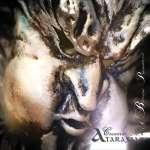 Ataraxia: Concerto No. 6