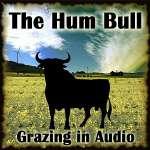 Grazing In Audio