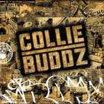 Collie Buddz: Collie Buddz