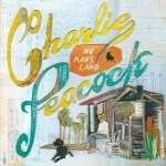 Charlie Peacock: No Man's Land