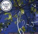 Amp Trio: Flow