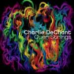 Charlie Dechant: Open Strings