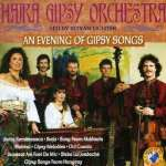 An Evening Of Gipsy Son