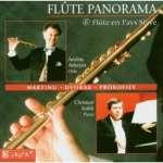 Andras Adorjan - Flute Panorama