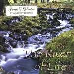 Ben Arvan: River Of Life