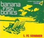 1. FC Sommer