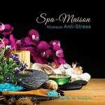 Collection Spa-Maison: Musique Anti - Various