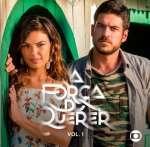 A Forca Do Querer V1 - Various