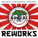 Red Bull Elektropedia Presents Reworks (Limited-Edition)