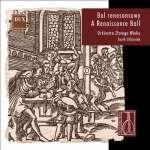A Ranaissance Ball