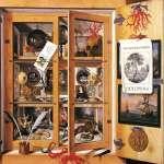 Acronym - Wunderkammer