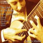 Anders Miolin - The Lion in the Lute