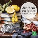 Adagio für Orgel & Streicher