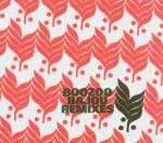 Boozoo Bajou: Remixes