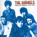 Absolute Animals 1964-68