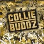 Collie Buddz +2