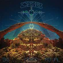 Chris Robinson Brotherhood: Big Moon Ritual, 2 LPs