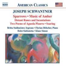Joseph Schwantner (geb. 1943): Music of Amber, CD