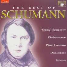 Schumann - Best of (Brilliant), 2 CDs