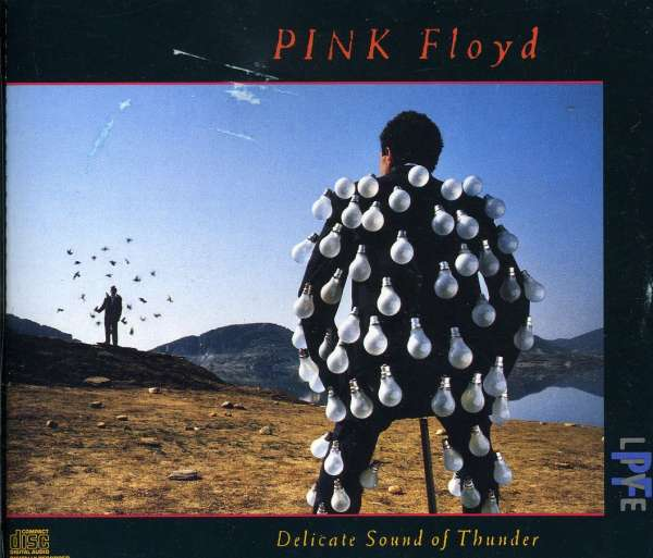 PINK FLOYD - Delicate Sound Of Thunder - CD x 2