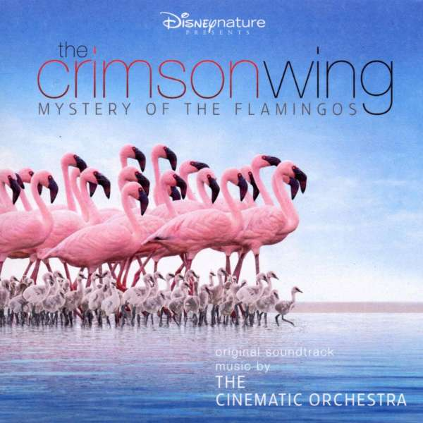 CINEMATIC ORCHESTRA, THE & LONDON METROPOLITAN ORC - Crimson Wing - Mystery Of The Flamingos - CD