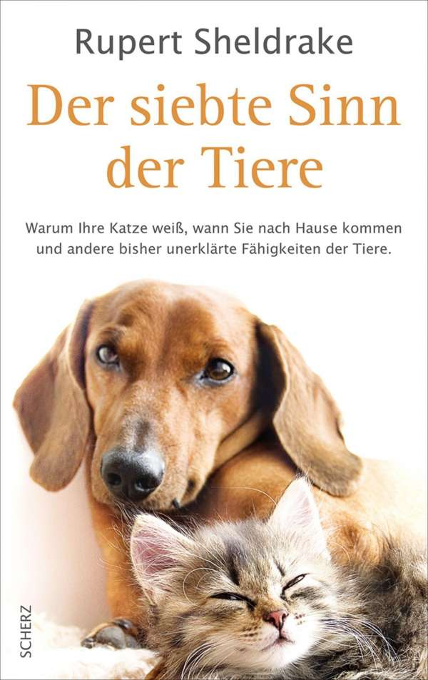 http://leseglueck.blogspot.de/2012/03/der-siebte-sinn-der-tiere.html