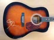 Korpus der von Steven Wilson signierten Gitarre