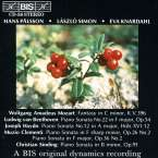 Christian Sinding (1856-1941): Klaviersonate op.91, CD
