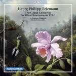 Konzerte für mehrere Instrumente & Orchester Vol.1
