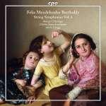 Streichersymphonien Vol.3