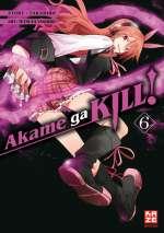 Akame ga KILL! 06 Cover