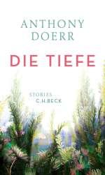Die Tiefe Cover