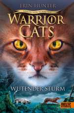 Wütender Sturm Cover