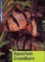 Aquarium : Grundkurs Cover