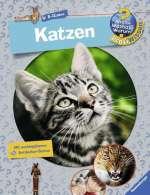 WWW? Profiwissen : Katzen Cover