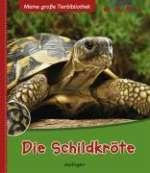 Die Schildkröte Cover