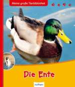 Die Ente Cover