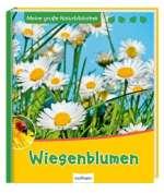 Wiesenblumen Cover