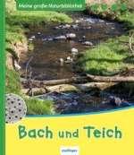 Bach und Teich Cover