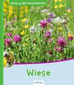 Wiese Cover