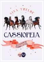 Das magische Pferde-Casting Cover