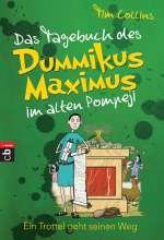 Das Tagebuch des Dummikus Maximus im alten Pompeji Cover