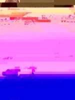 Wenn Fuchs und Hase sich Gute Nacht sagen Cover