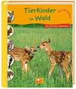 Tierkinder im Wald Cover