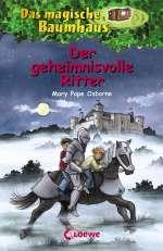 Der geheimnisvolle Ritter Cover